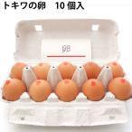 送料込 卵 青森 トキワ養鶏 卵 20個
