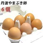 丹波やまぶき卵6個 これ以上ない 餌にこだわりぬいた卵6個 送料別 ポイント消化 食品