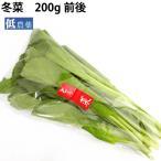 冬菜5把 新潟県産無農薬栽培。 送料無料