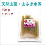 天然山菜・山ふき水煮 100g  5袋  送料無料
