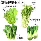 国産 野菜 葉物セット 4品 送料無料