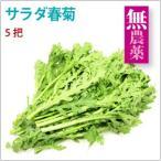サラダ春菊 5把 長野県産無農薬栽培 送料無料