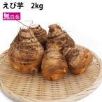えび芋 栃木県産 無農薬栽培 2kg 送料無料
