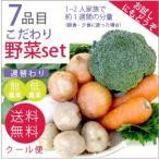 無農薬 低農薬 7品目野菜セット 少人数 お試し向け 送料無料