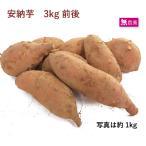 安納芋3kg 無農薬栽培 送料無料