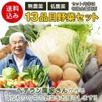 無農薬 低農薬 13品目 こだわり野菜セット 送料無料