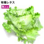 国産 野菜 有機レタス 1玉  無農薬栽培 送料別 ポイント消化 食品
