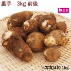 里芋 3kg  無農薬 栽培 送料無料