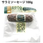 送料込 丹沢ハム工房 無添加 サラミソーセージ 100g 5パック 冷凍