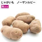 じゃがいも ジャガイモ ノーザンルビー 5kg 北海道産 無農薬栽培 きれいなピンク色のじゃがいも 送料無料