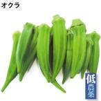 オクラ 100g 5パック 低農薬  送料込