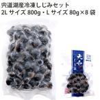 しじみ市場 宍道湖産冷凍しじみセット( 2Lサイズ800g・Lサイズ80g×8袋) 1セット 送料込