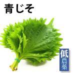 青じそ1パック 栃木県産無農薬栽培青じそ10枚  送料別