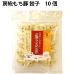 ショッピングギョウザ 無添加 冷凍総菜 国産豚 房総もち豚 餃子 180g(10個) 3パック 送料無料