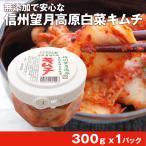 ポイント消化 食品 国産 信州 望月高原 白菜キムチ 300g 1パック 無添加 カナモト食品
