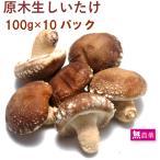 きのこ 生しいたけ 原木生椎茸 4パック 5〜6枚入 10パック 送料込