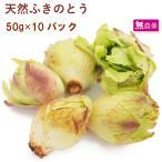 山菜 天然 ふきのとう  50g 10パック 送料込