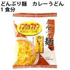 無添加 どんぶり麺 ノンカップメン カレーうどん 1食分 24袋 送料無料