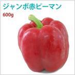 ジャンボ赤ピーマン600g 高知県産低農薬栽培。 送料無料