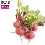 vegetable-heart_782107