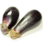 なす 2kg 低農薬栽培 送料無料