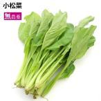 小松菜 無農薬栽培 5把 送料無料