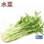 ポイント消化 食品 有機 水菜 1把 無農薬栽培  送料別