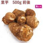 里芋 500g  無農薬栽培  送料別 ポイント消化 食品