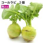 コールラビ 200g 千葉県産 無農薬栽培 送料別 ポイント消化 食品