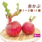 赤かぶ 400g前後 栃木県産 無農薬栽培  送料別 ポイント消化 食品