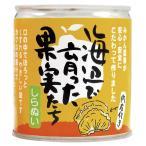 いのうえ果樹園 海辺で育った果実たち(不知火(しらぬい)缶詰) 295g(固形量170g) 8個 送料無料