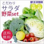 野菜 野菜セット 無農薬 低農薬 こだわり サラダ野菜セット 送料無料