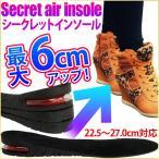 シークレット インソール シークレットソール 最大6cm 中敷き 衝撃吸収 メンズ レディース インヒール サイズ調整 靴 シューズ ブーツ かかと 高さ調節