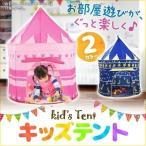 キッズテントハウス  ボールハウス 子供用テントハウス ピンク ブルー 収納バッグ付き 室内 屋内 キッズ ベビー おもちゃ入れ プレイテント おままごと 玩具の家