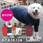 犬 服 VERY 中型犬 大型犬 Web限定 秋冬服3枚セット 女の子カラー(※色・柄は選べません)6号・7号・8号・10号・12号 特価 在庫限り ドッグウェア