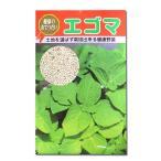野菜の種/種子 エゴマ えごま (白) 20ml (メール便可能)