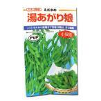 野菜の種/種子 湯あがり娘・えだまめ 枝豆 100粒(メール便発送)