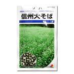 野菜の種/種子 信州大そば 1dl (メール便可能)タキイ種苗