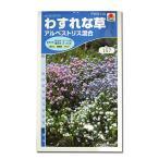 花の種 わすれな草[アルペストリス混合] 0.8ml(メール便可能)