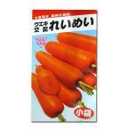 野菜の種/種子 れいめい・ニンジン にんじん 人参 10ml (メール便発送)