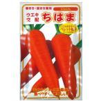 野菜の種/種子 ちはま五寸人参・ニンジン にんじん ペレット種子 400粒 (メール便発送)