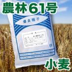 野菜の種/種子 小麦・農林61号 1kg