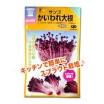 スプラウトの種 サンゴ かいわれ大根 35ml(メール便可能)
