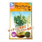スプラウトの種 グリーンマッペ(緑豆)70ml(メール便可能)