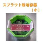スプラウト専用 栽培容器(小)