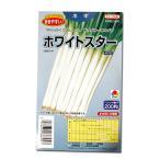 野菜の種/種子 ホワイトスター 根深ねぎ 200粒(メール便発送)タキイ種苗