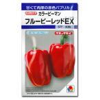 野菜の種/種子 フルーピーレッドEX・カラーピーマン 30粒 (メール便可能)タキイ種苗