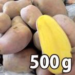 野菜・種/苗[春ジャガイモ種芋]北海道産 インカのひとみ いんかのひとみ じゃがいも種芋・生もの種 量り売り500g 【12月中旬頃発送】