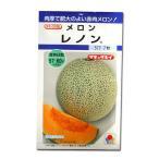 野菜の種/種子 レノン・メロン 7粒 (メール便可能)タキイ種苗