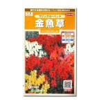 花の種 金魚草[マジックカーペット] 0.1ml(メール便可能)